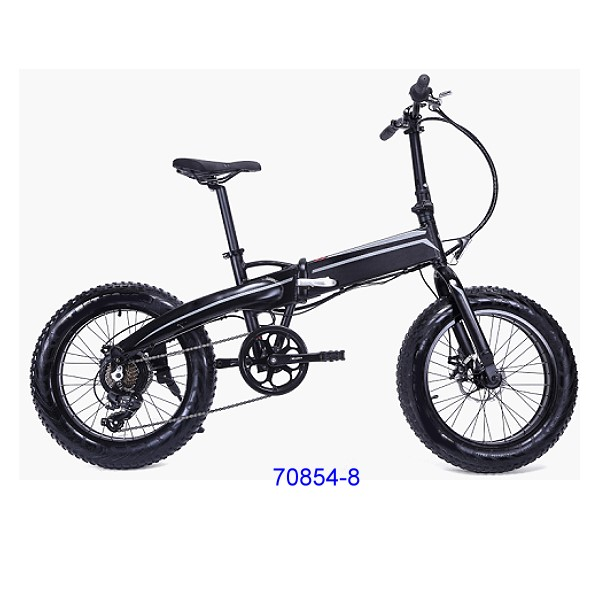 70854-8 Electric bike